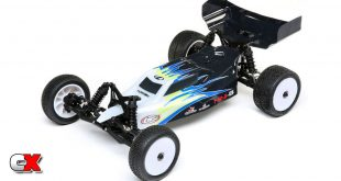 Losi Mini-B 1/16 Scale 2WD Buggy RTR | CompetitionX