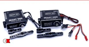 Reef's RC Beast 1000/Beast 2000 1/5 Scale Servos | CompetitionX