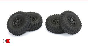 Pro-Line Racing 1/24 Hyrax 1.0 Crawler Tire | CompetitionX